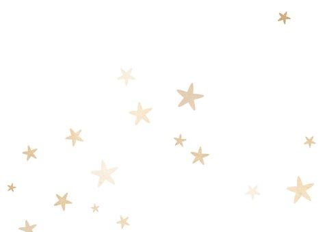 Kerstkaart fotocollage met gouden sterren Achterkant