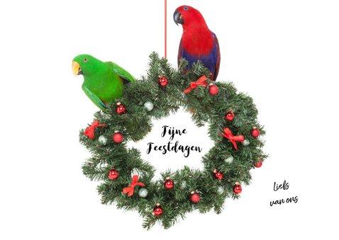Kerstkaart - Papegaaien kerstkrans 3