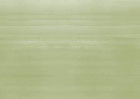 Kerstkaart waterverf botanisch groen Achterkant