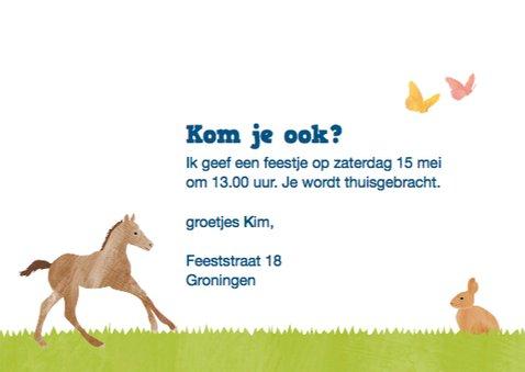 Kinderfeestje paarden 3