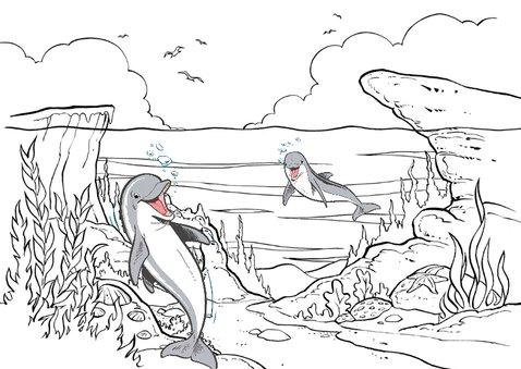Kinderkaart Dolfijn met kleurplaat - A 3