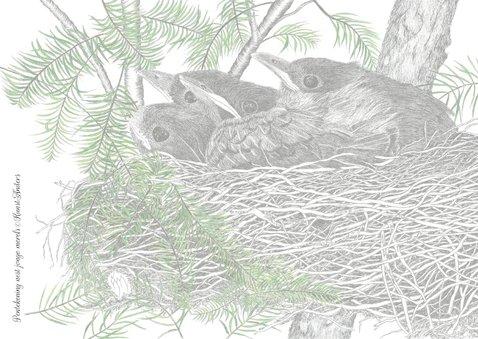 Kunstkaart nest jonge Merels 2