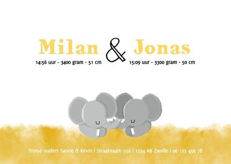Lief geboortekaartje voor tweeling met olifantjes en sterren 3