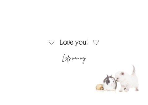 Liefde kaart 'love hugs kisses met konijn kuiken kitten 3