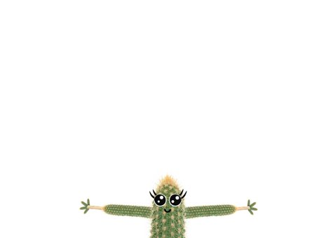 Liefdeskaart met cactus met ik vind jou zooooo leuk!  3