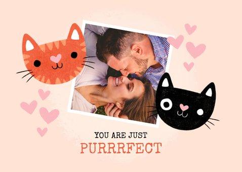 """Lieve valentijnskaart met katten """"You are just purrfect"""" 2"""