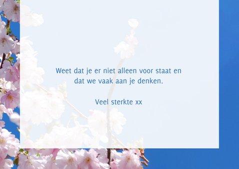 Sterkte kaart sending you lots of sunshine bloesemtak 3