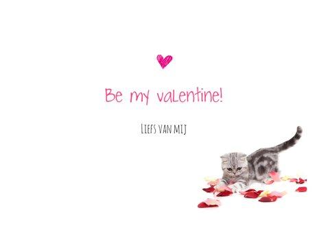 Valentijnskaart - You're purrrfect - Kitten roze 3