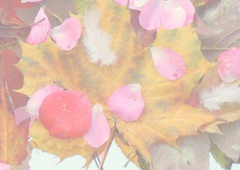 Verjaardag Herfst schatten IW 3