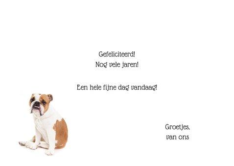 Verjaardagskaart - Happy Birthday Handsome - Bulldog 3