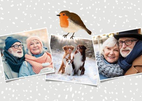 Vrolijke winterse kerstkaart met eigen foto's en roodborstje 2