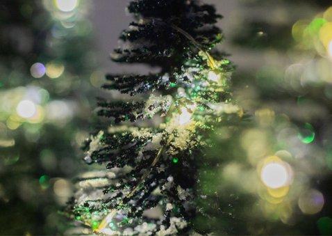 Winterse kerstkaart met kerstbomen in sneeuw 2