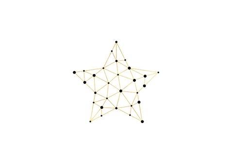 Zakelijke kerstkaart gouden ster met foto verbinding 2