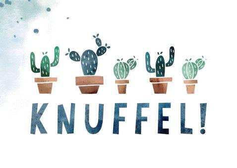 Zomaar kaart knuffel met cactussen 2