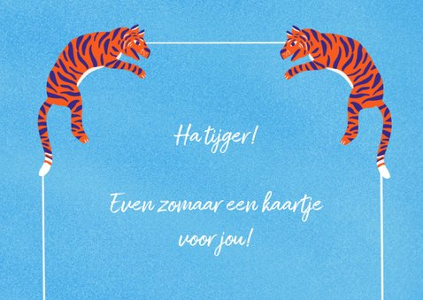 Zomaarkaart Hi Tiger 2