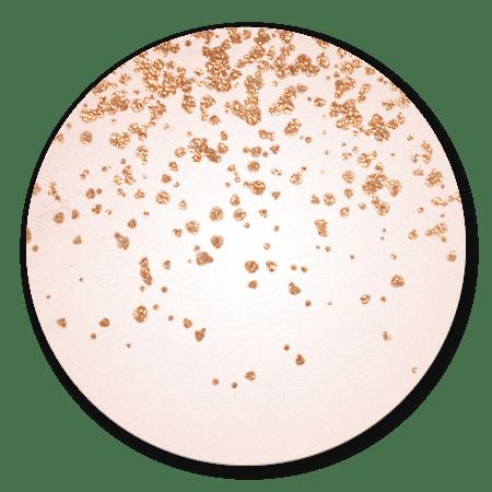 Roségouden glitters