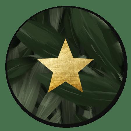 Jungle bladeren met ster