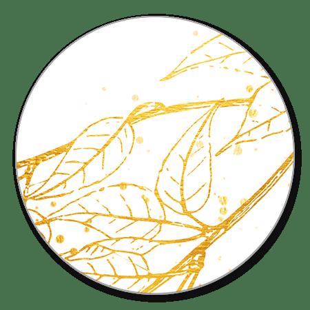 Gouden bladeren met spetters