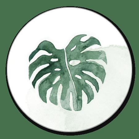 Sluitzegel botanisch blad