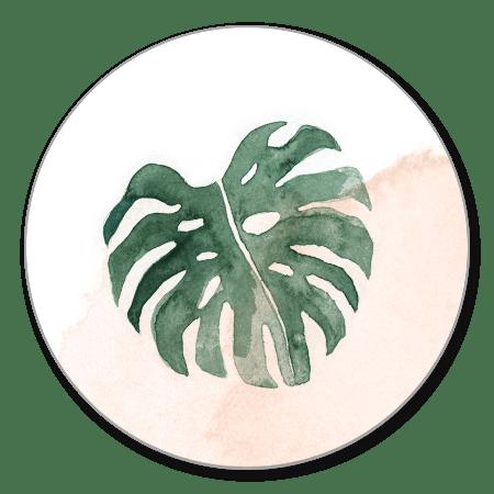 Sluitzegel botanisch blad 2