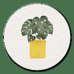 Pflanze gelber Topf