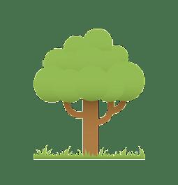 bomenmeter