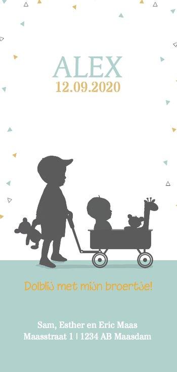 Langwerpige geboortekaart jongetje kar