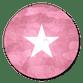 Army roze met ster