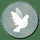 Weiße Taube auf Blau