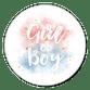 Geboorte Gender revealparty