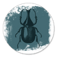 Insect met witte verf